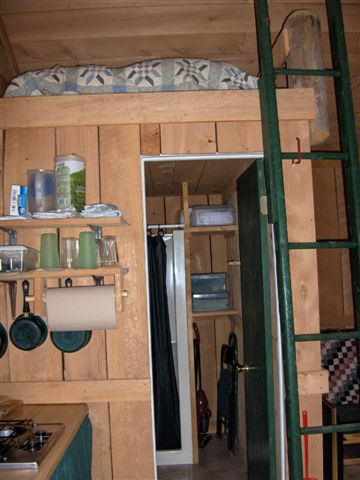 Pepacton Cabins Algonkin Cabin